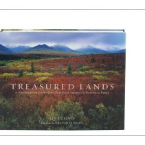 Treasure Lands book by QT Luong