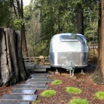 Glamping in the russian river in an Airstream